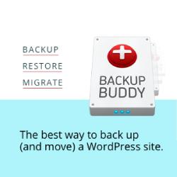 iThemes BackupBuddy WordPress Website Development
